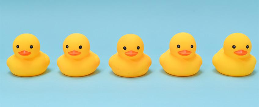 Row of Identical Ducks